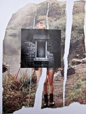 Window And Door Series :: Bricked Wilderness